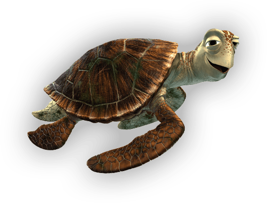 turtle-father